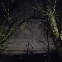 """TRYPTICH INTO DARKNESS – Trance to the Moon """"Lavendar Skies"""" / FLOSSING """"Queen of the Mall"""" EP / Voidant """"Voidant"""""""