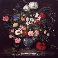 "Efflorescence, Beauty, Decay – The Wild Swans ""The Coldest Winter For A Hundred Years"""