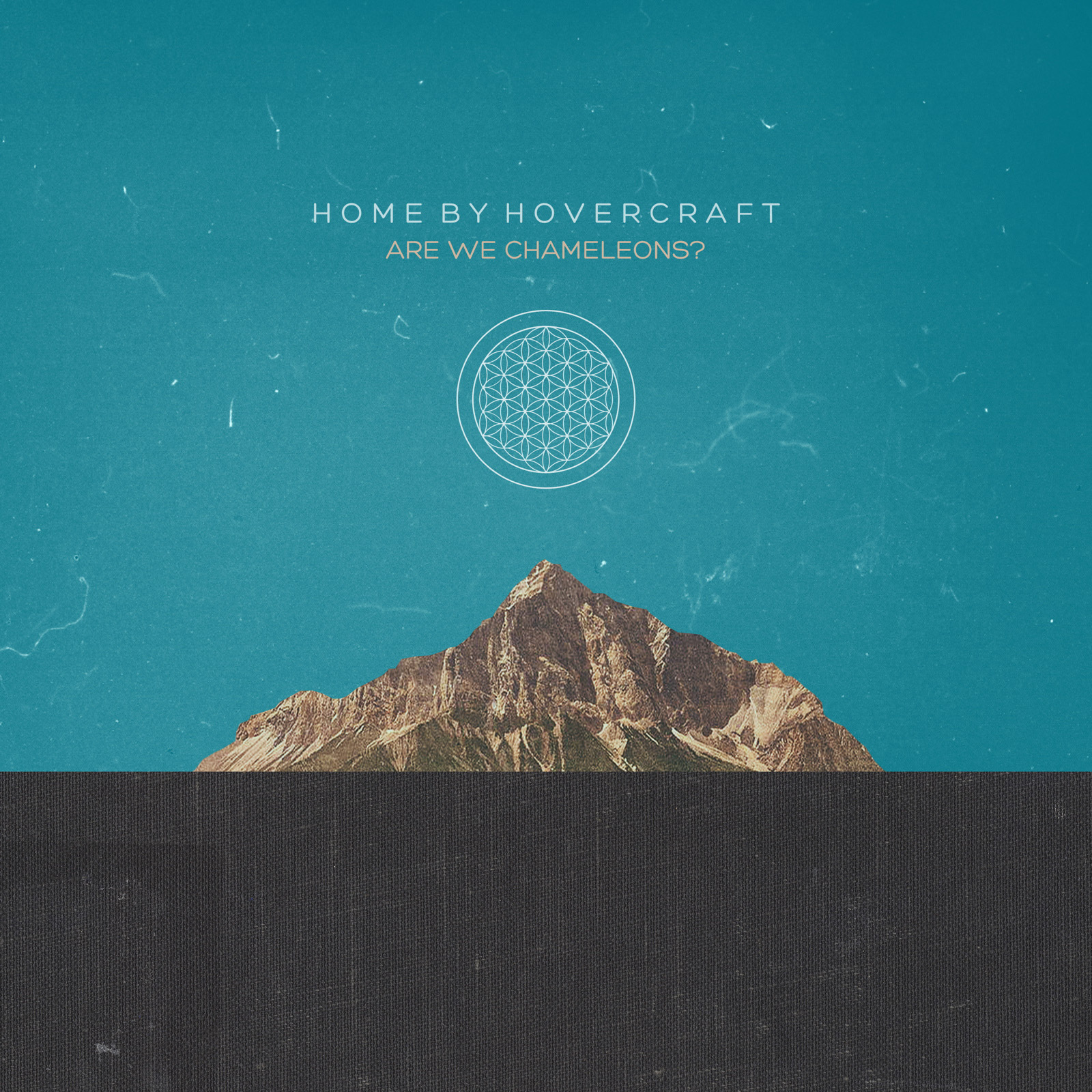 Dark, Jittery Beauty: Home By Hovercraft's Are We Chameleons?