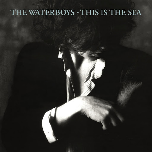 We're In The Wild Waters Now–The Waterboys' This Is The Sea