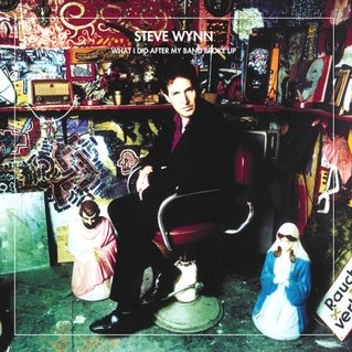 A Rock 'n' Roll Poet Makes It New: Steve Wynn Live at Milwaukee's Shank Hall