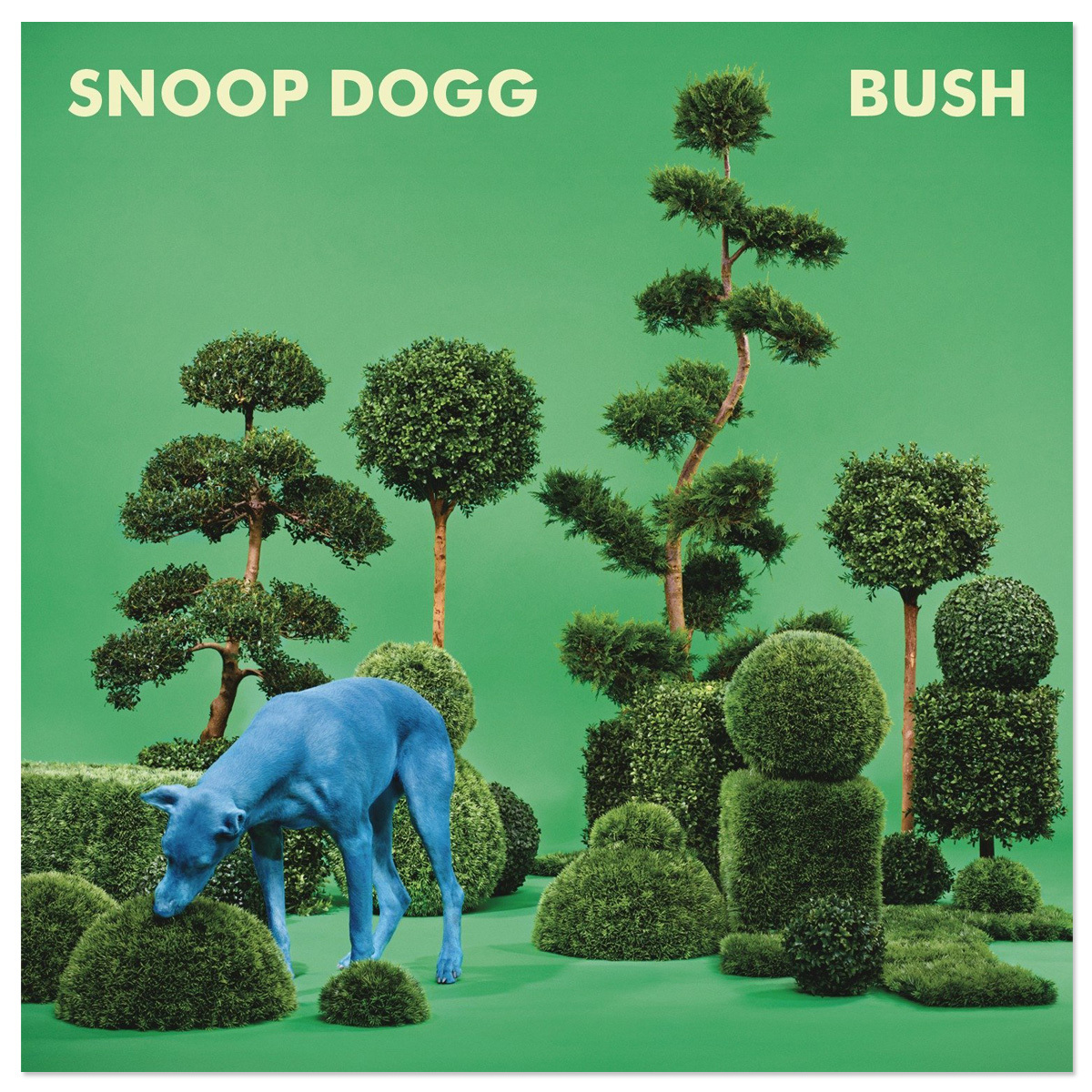 Old-School Synth-Funk With Hooks: Snoop Dogg's Bush