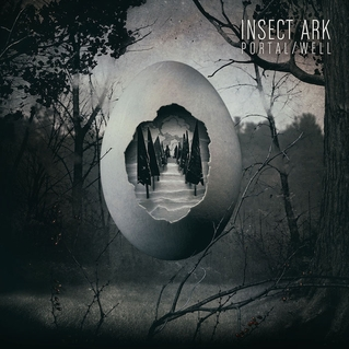 """A Complex, Primal Embroidery of Sound – """"Portal/Well"""" by Insect Ark"""