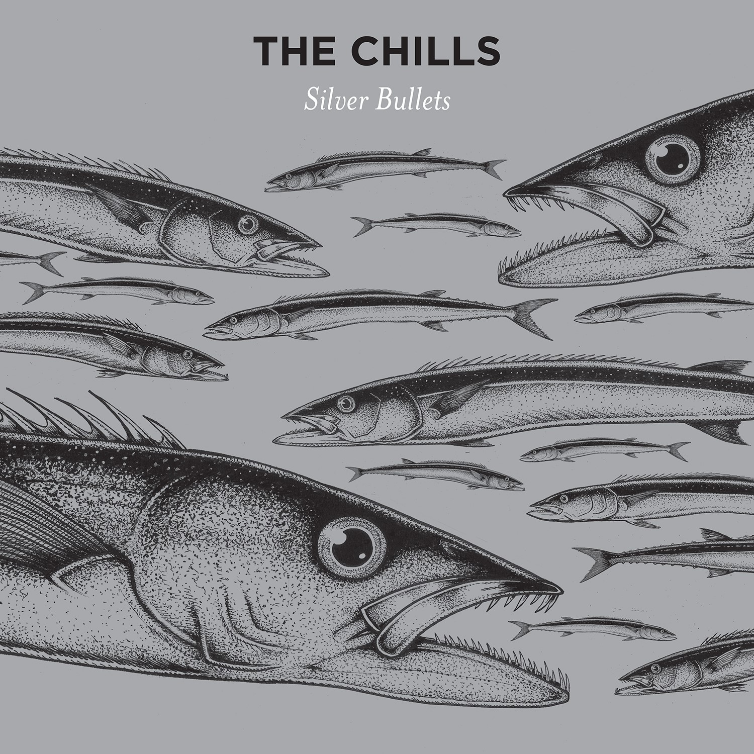 "Stereo Embers' TRACK OF THE DAY: The Chills' ""When The Poor Can Reach The Moon"""