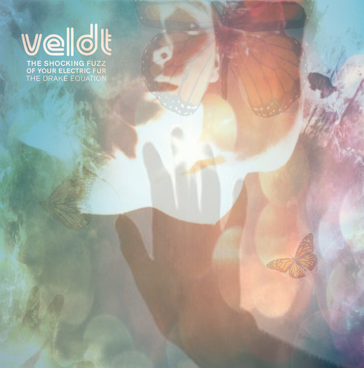 The Veldt's Danny Chavis Talks To Stereo Embers