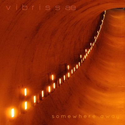 "Stereo Embers' TRACK OF THE DAY: Vibrissae's ""Need"""