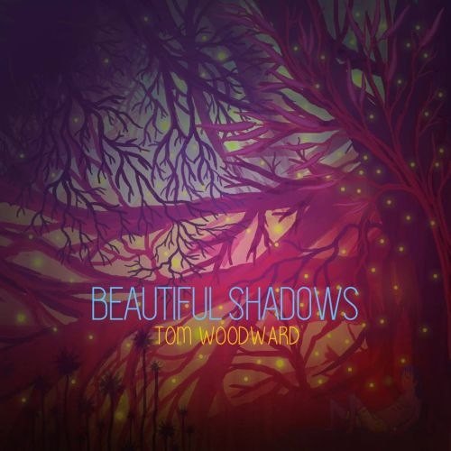 "Stereo Embers' TRACK OF THE DAY: Tom Woodward's ""Beautiful Shadows"""