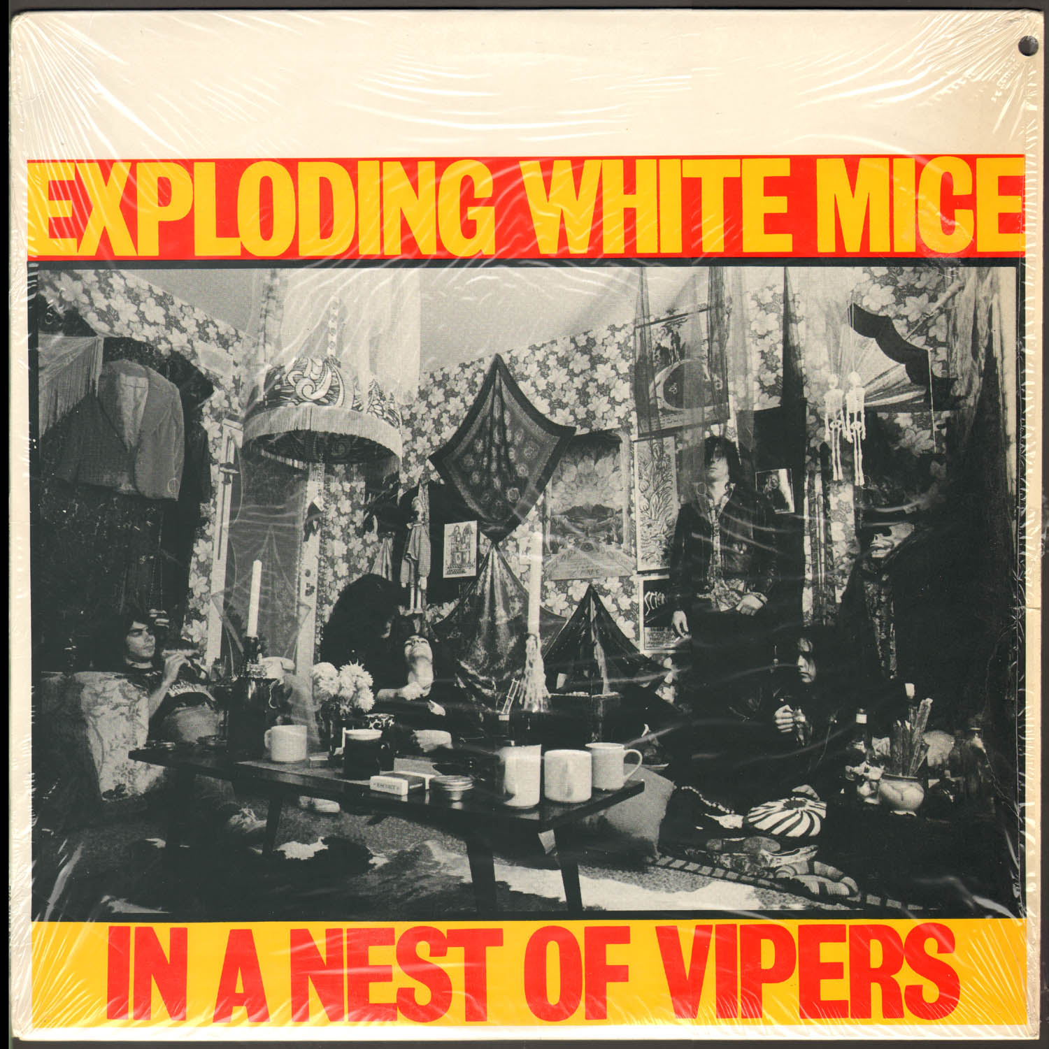 Exploding White Mice Bassist Andy MacQueen Has Died