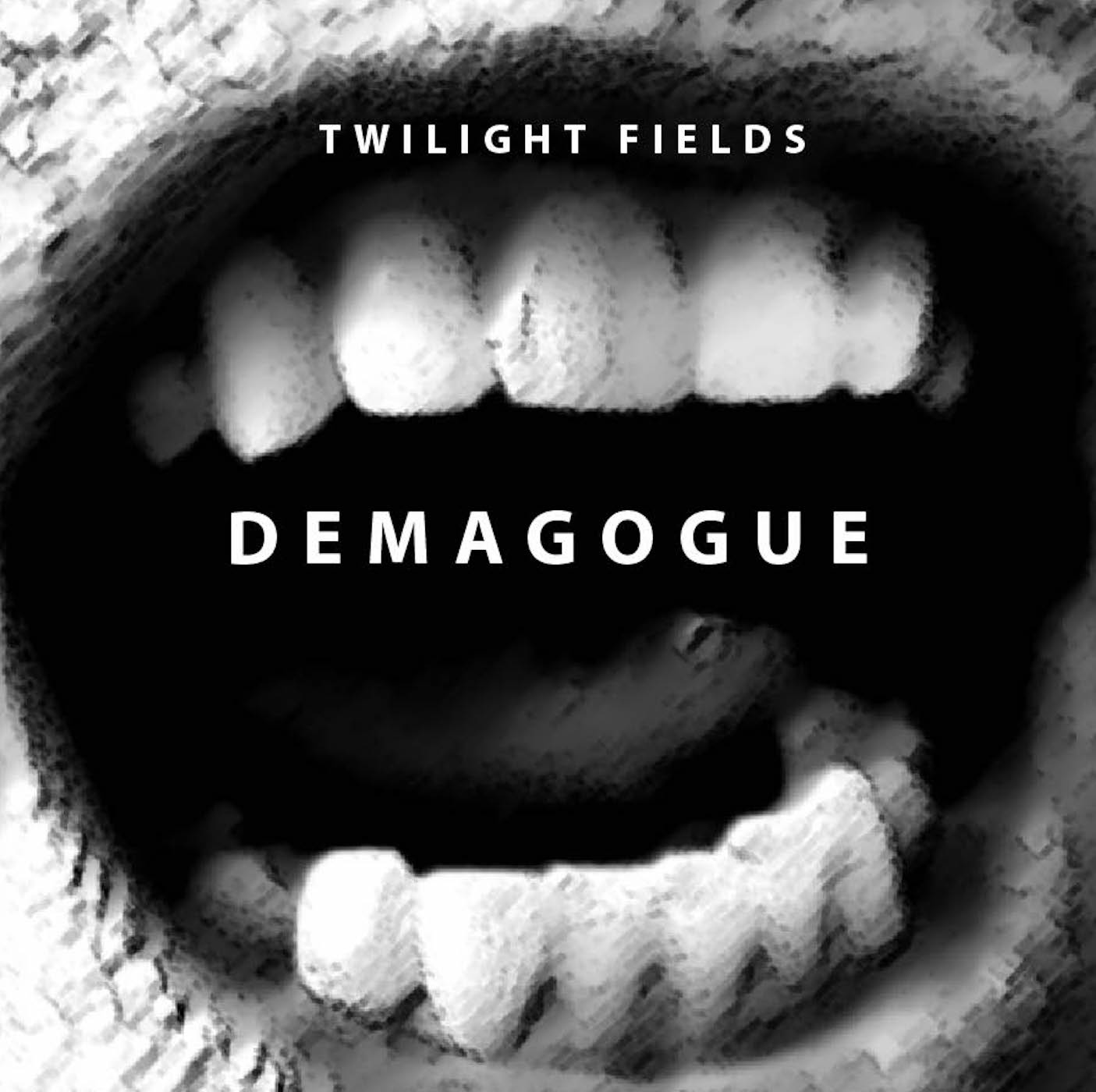 "Stereo Embers' TRACK OF THE DAY: Twilight Fields' ""Demagogue"""