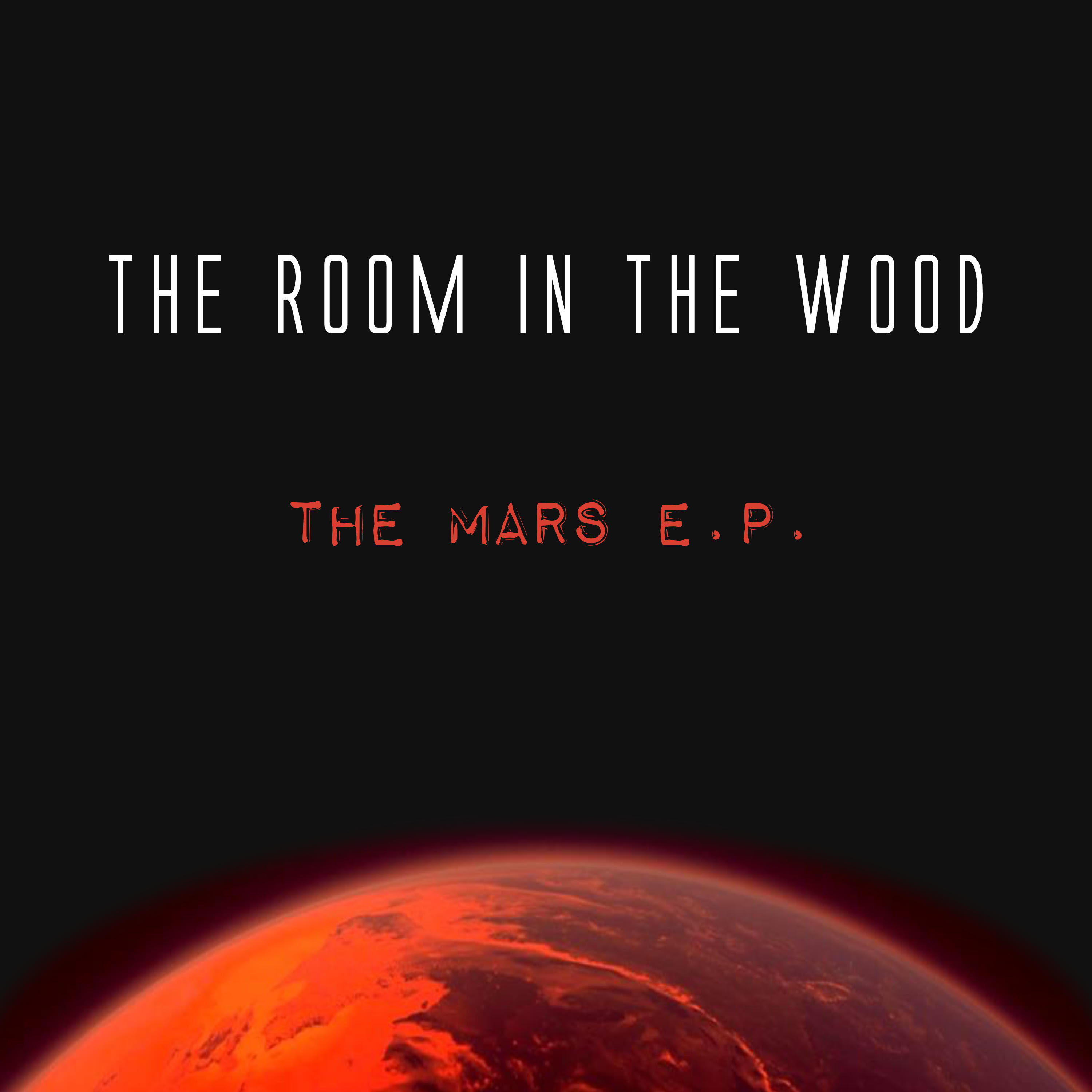 "Stereo Embers' TRACK OF THE DAY: The Room In The Wood's ""Mars (Won't Save Us)"""