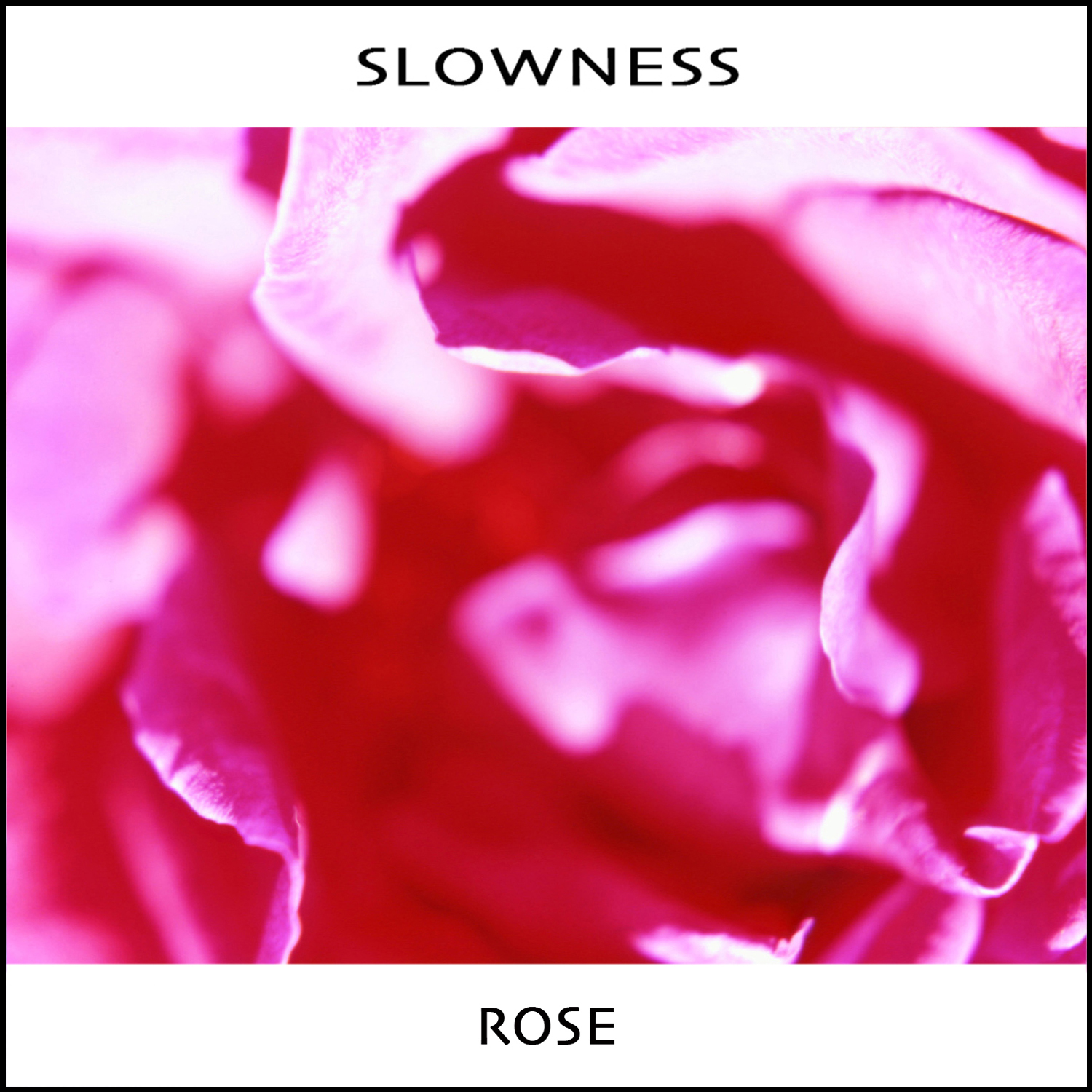 "Stereo Embers' TRACK OF THE DAY: Slowness' ""Rose"""