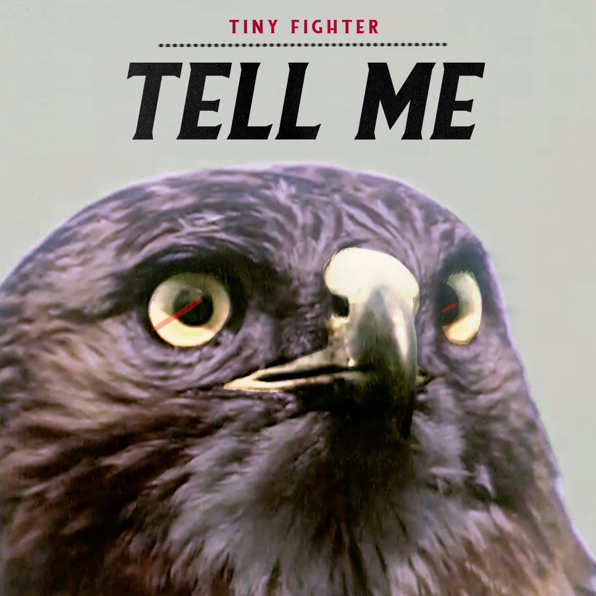 "Stereo Embers' TRACK OF THE DAY: Tiny Fighter's ""Tell Me"""