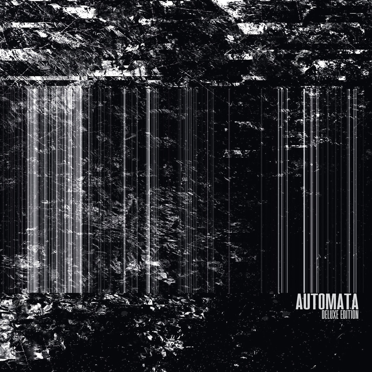 "Darkly Captivating – The Lush Dystopianism of Slighter's ""Automata"""