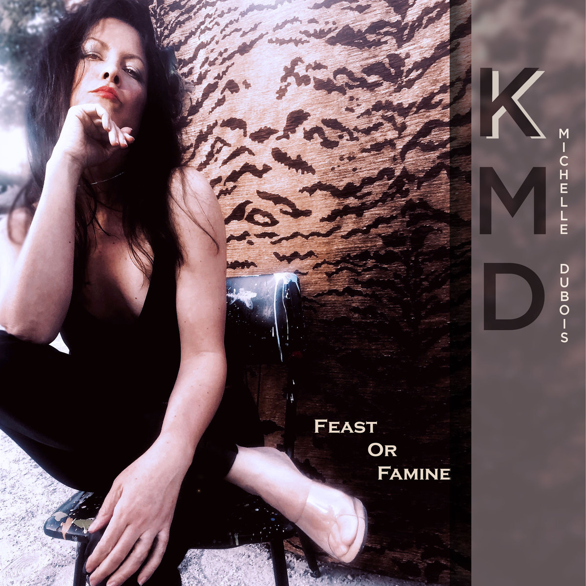 "Stereo Embers' TRACK OF THE DAY: K Michelle DuBois' ""Feast Or Famine"""