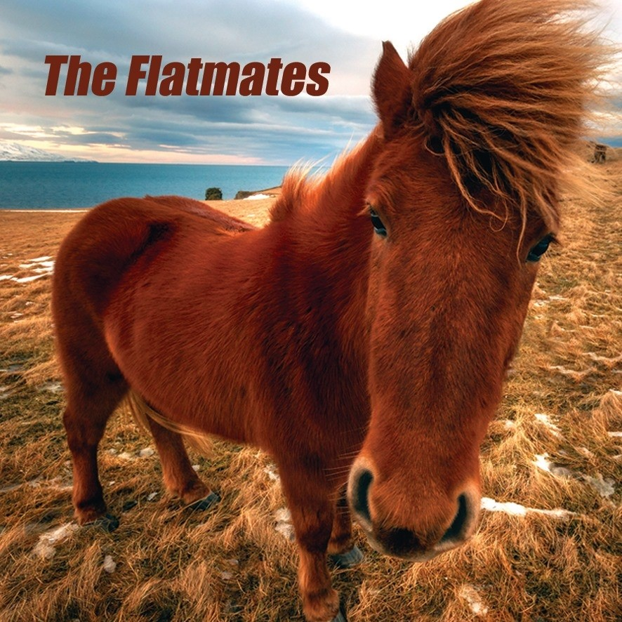 The Flatmates Set To Release Their Debut Album
