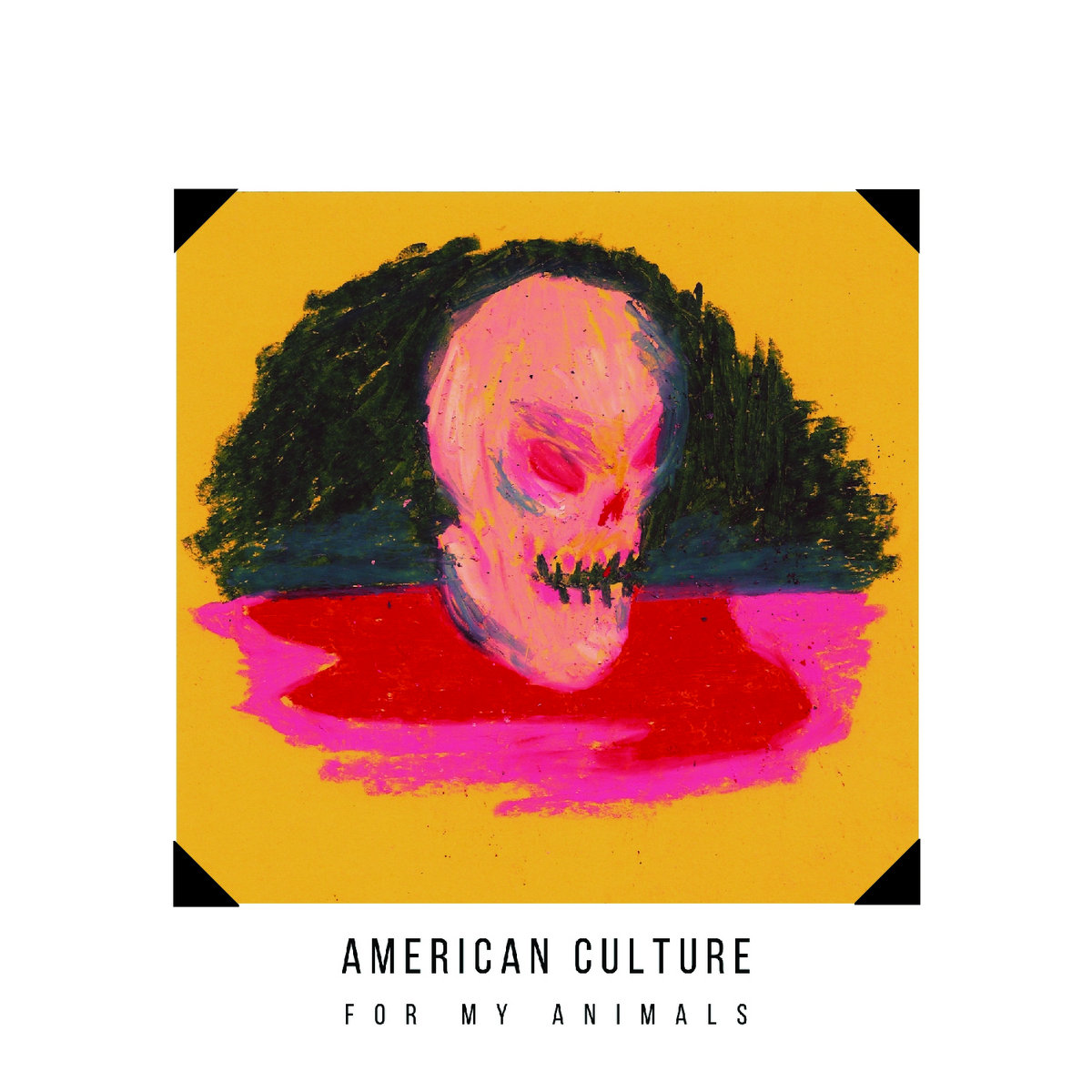 "Top-Shelf Pop Shenaniganism – ""For My Animals"" by American Culture"
