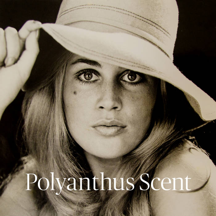 """Stereo Embers' TRACK OF THE DAY: Ian Ashford & The Solidarity Band's """"Polyanthus Scent"""""""